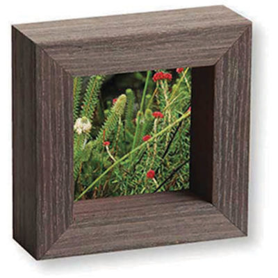 The Wooden Slip Frame Small has a very rustic and warm tone, it will brighten up the room and make it stylish.