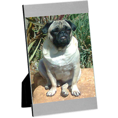 The Sweet Memories Frame is made from aluminium with a stand to keep it upright place a photo of your furry friend inside.